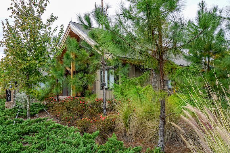 Copper Creek Cabin at Disney's Wilderness Lodge image