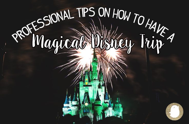 Disney World Tips cover image