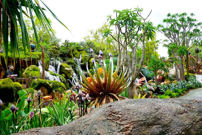 Pandora-World of Avatar plant life image