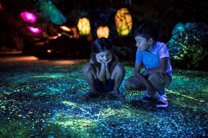 Pandora at night image